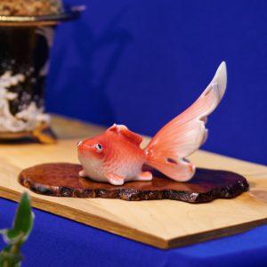 Японские орхидеи - выставка 2015