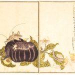 неофинетия Куцувамуси 비충 轡虫 Kutsuwamushi