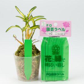 etiketka-marker-zelenaya